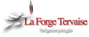 Logo Forge Tervaise
